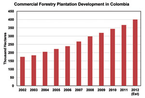 Commercial Forestry Plantation Development in Colombia